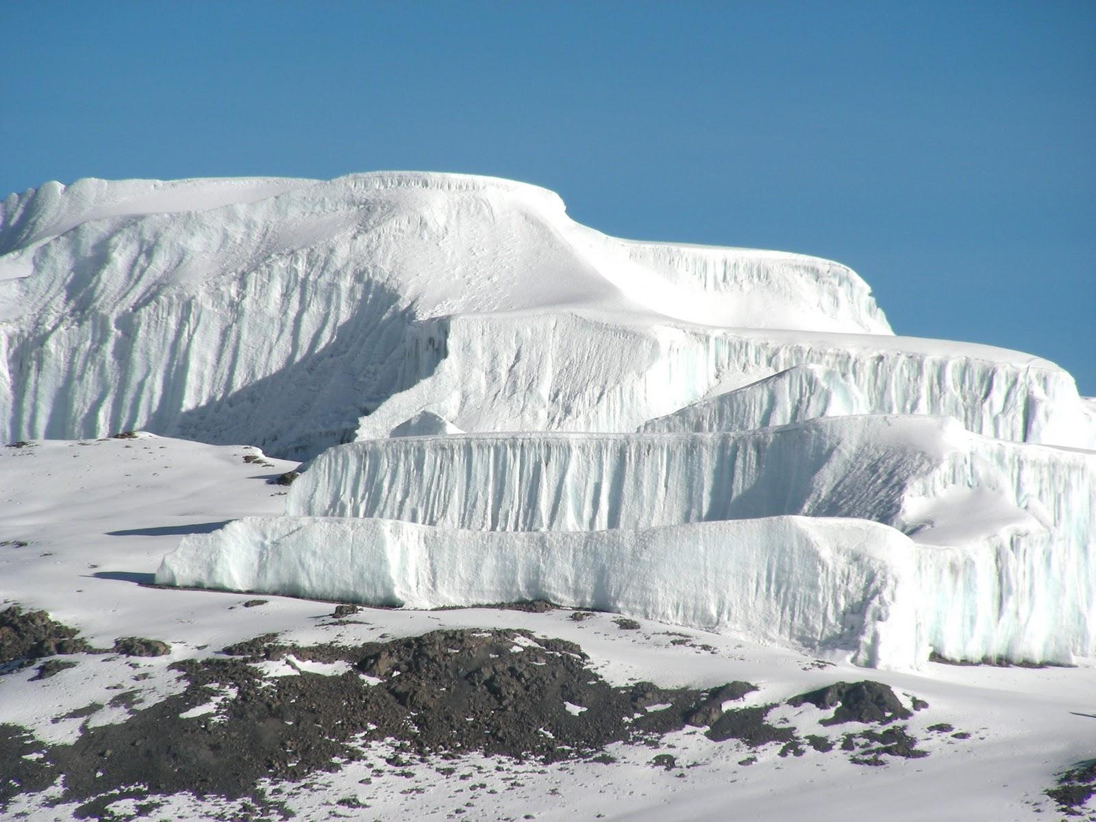 the snows of kilimanjaro essays