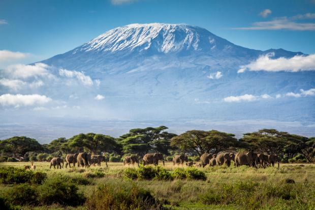 Mt Kilimanjaro natural wonders