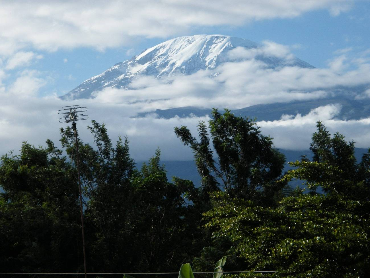 Guided Tours Of Kilimanjaro
