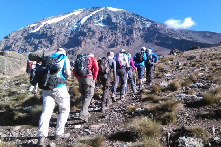 lemosho-route-join-group-kilimanjaro-climb